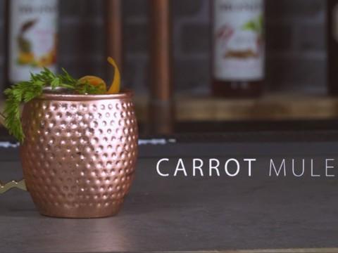 Carrot Mule