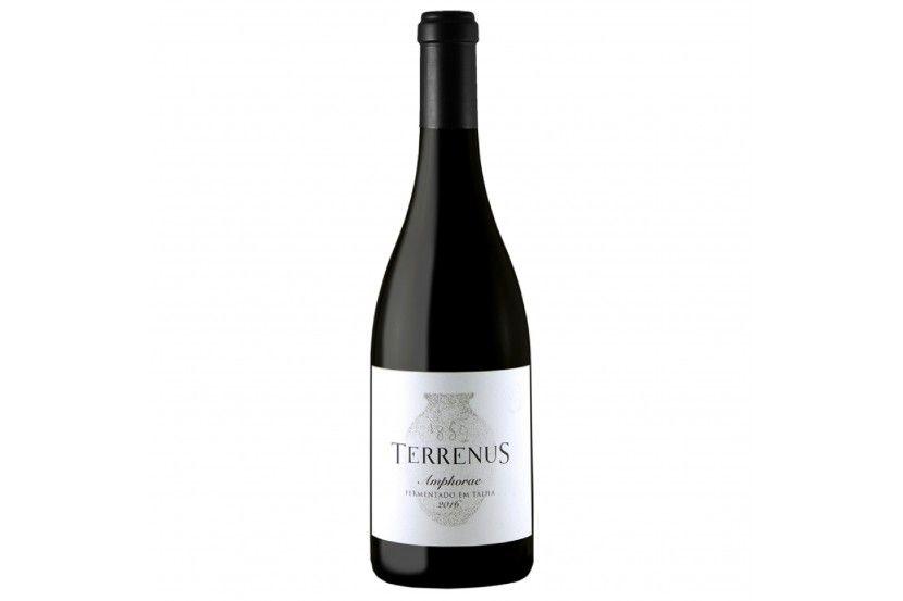 Red Wine Terrenus Vinha Ammaia Amphorae 75 Cl